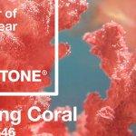 Coral: El color del año 2019 para decoración